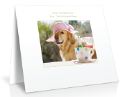 pet greeting card